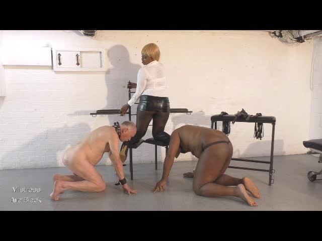 Ava Black Boot Sucking Sluts