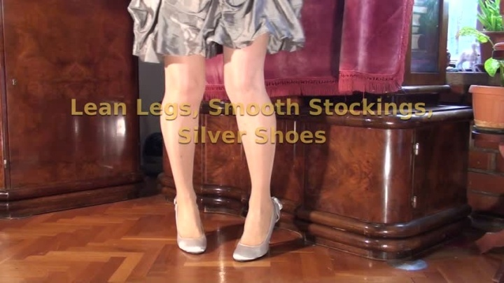 Dorisdawn Lean Legs Smooth Stockings Silver Shoes