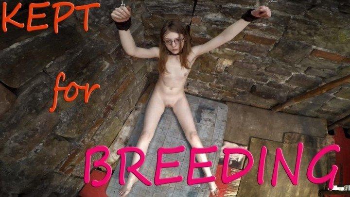 Ffezine Kept For Breeding Taboo