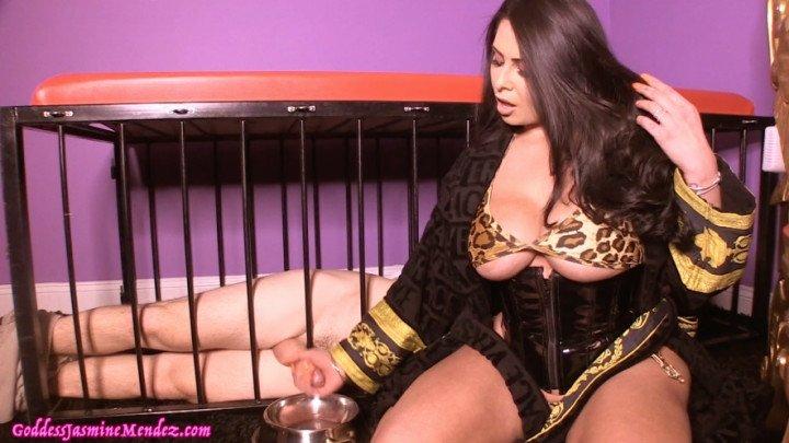 Jasmine Mendez Premature Ejaculating Cei Cage Pet