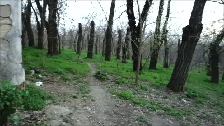 [Full HD] Public Sex Naked In Park Amateur Couple Outdoor - LittleDevy - - 00:06:07 | Pov, Outdoor Sex - 540,4 MB