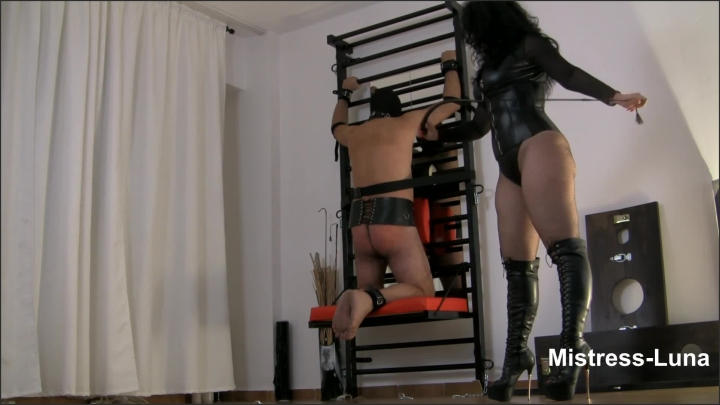 [Full HD] Slave Punished By Mistress Luna With Her Bullwhip - Mistress Luna - - 00:08:04 | Femdom, Role Play, Verified Amateurs - 198,7 MB