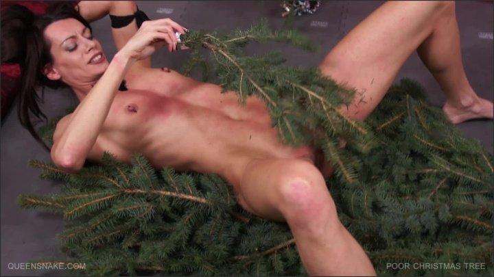 Queensnake  Poor Christmas Tree  1080P